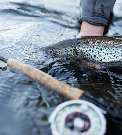 Fishing_saxnas.se